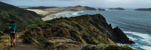 Getting to and from Cape Reinga